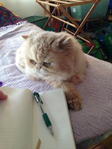 Charliethewriter